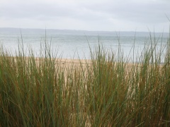 Phillip Island 1