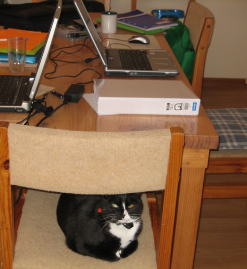 Overseeing activities at a writing retreat