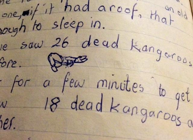 FlindersRanges_deadkangaroos