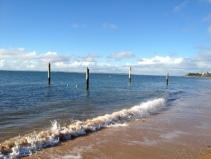 phillip island - posts