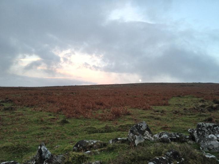 Dartmoor - 2ndvillage_20cm
