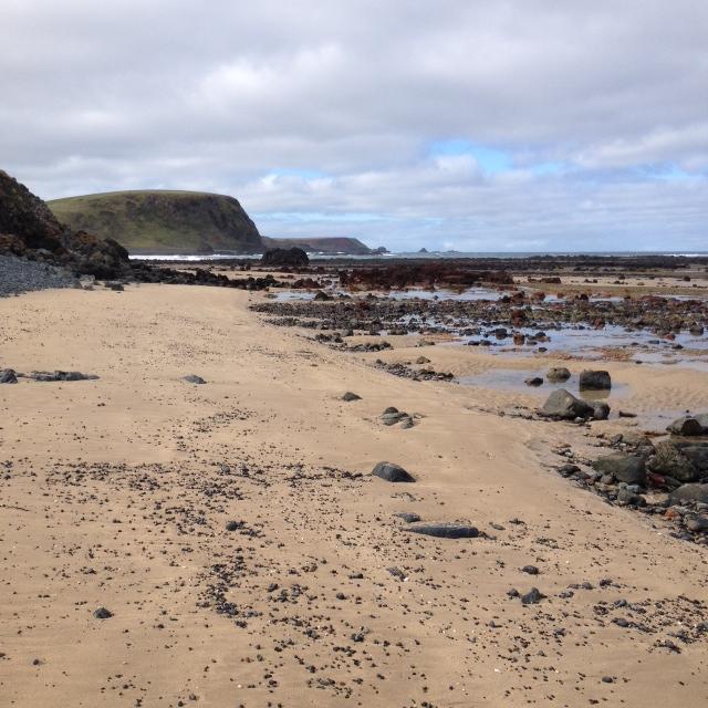 beach near watt pt