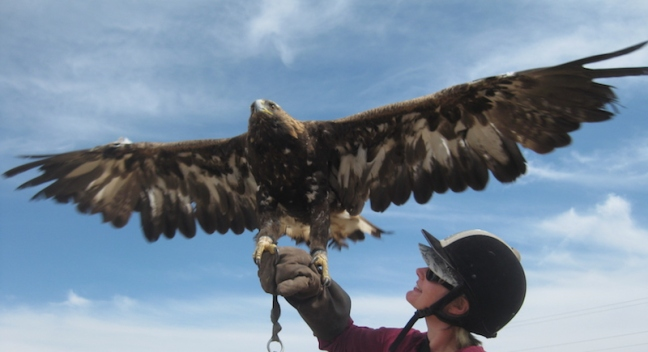 Day 4 - Me with a golden eagle. Gorgeous.